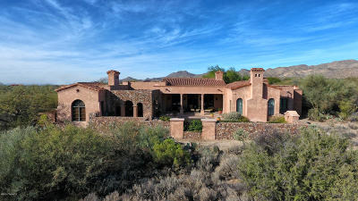Pima County Single Family Home For Sale: 1272 W Twisted Mesquite Place