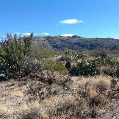 Residential Lots & Land For Sale: 4250 S Saguaro Monument Place