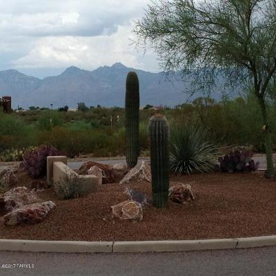 Residential Lots & Land Active Contingent: 11845 E Saguaro Flower Court #19
