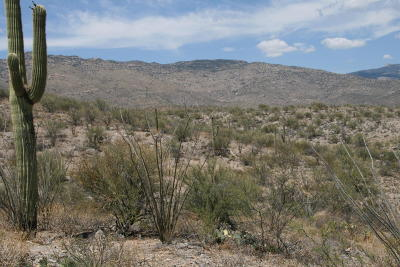 Residential Lots & Land Active Contingent: 15215 E Rincon Creek Ranch Road #--