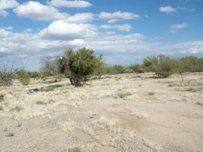 Tucson Residential Lots & Land For Sale: 15020 W Cattle Trl