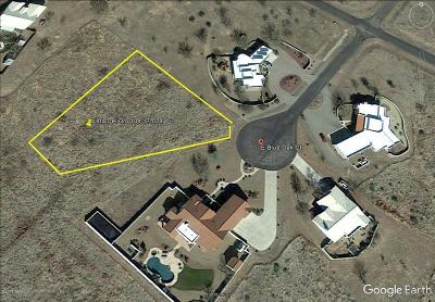 Tucson Residential Lots & Land For Sale: E Vista Del Oro