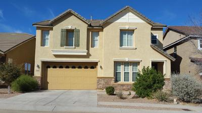 Vail Single Family Home Active Contingent: 10995 E Pima Creek Drive