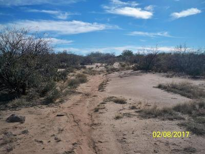 Residential Lots & Land For Sale: 12121 W Trigger Lane