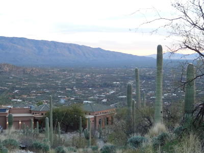 Tucson Residential Lots & Land For Sale: 12145 E Quesada Place N