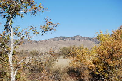 Cochise County Residential Lots & Land For Sale: E Turkey Creek Road