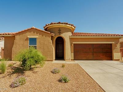 Sahuarita Single Family Home For Sale: 1375 E Stronghold Canyon Lane