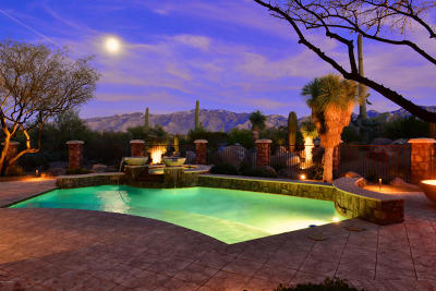 Oro Valley Single Family Home For Sale: 462 W Tortolita Mountain Circle