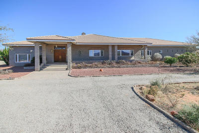 Green Valley Single Family Home For Sale: 23933 S Camino De La Canoa