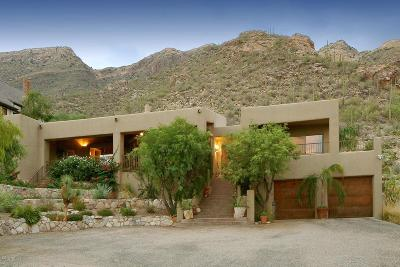 Tucson Single Family Home For Sale: 7063 N Mission Hill Lane