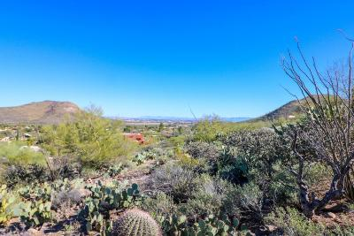 Residential Lots & Land For Sale: 240 S Corte Tortuga Vista