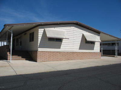 Tucson Single Family Home For Sale: 5470 W Flying W Street