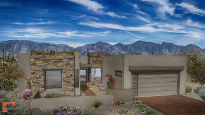 Oro Valley Single Family Home For Sale: 14215 N Rock Haven #19