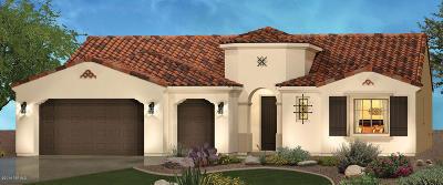 Tucson Single Family Home For Sale: 62447 E Border Rock Road