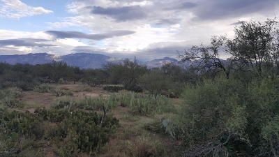 Tucson AZ Residential Lots & Land For Sale: $395,000
