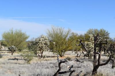 Residential Lots & Land For Sale: 15600 W Cattle Trail Trail #53