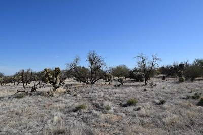 Residential Lots & Land For Sale: 15640 W Cattle Trail #54