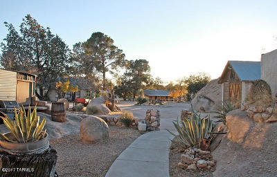 Cochise County Residential Income For Sale: 4190 E Dragoon Road