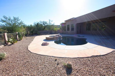 Marana Single Family Home Active Contingent: 13952 N Running Creek Court