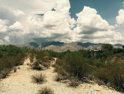 Tucson Residential Lots & Land For Sale: 4041 N San Simeon Road #2