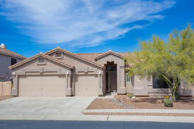 Desert Vista (1-205) Single Family Home For Sale: 11261 N Twin Spur Court
