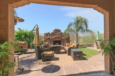 Sahuarita Single Family Home For Sale: 790 W Camino Curvitas