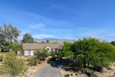 Tucson Single Family Home For Sale: 2450 N Placita Lydia