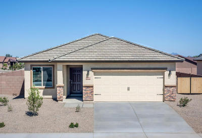Marana Single Family Home For Sale: 11273 W Rock Art Drive