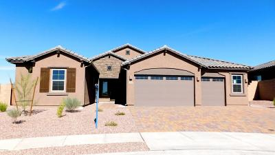 Oro Valley Single Family Home For Sale: 13050 N Eagles Summit Drive N