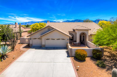 Oro Valley Single Family Home For Sale: 11230 N Via Rancho Naranjo