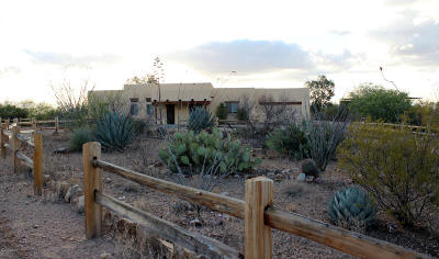 Sahuarita Single Family Home For Sale: 17948 S Kolb Road