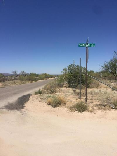 Residential Lots & Land For Sale: 14869 W Raindance Road