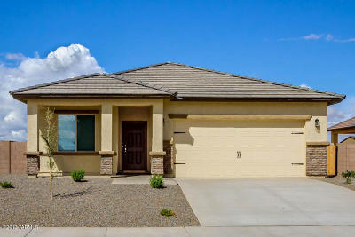 Marana Single Family Home For Sale: 11294 W Rock Art Drive