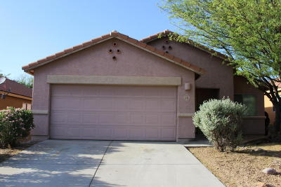 Pima County, Pinal County Single Family Home For Sale: 28 W Eric Dorman Street
