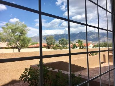 Pima County, Pinal County Single Family Home For Sale: 64261 E Echo Canyon Court
