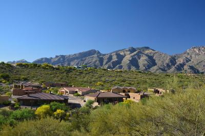 Residential Lots & Land For Sale: 4211 N Sierra Chapita #12