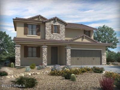 Single Family Home For Sale: 7271 S Via Cabana