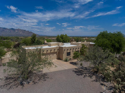 Oro Valley Single Family Home For Sale: 2867 W Owl Vista Place
