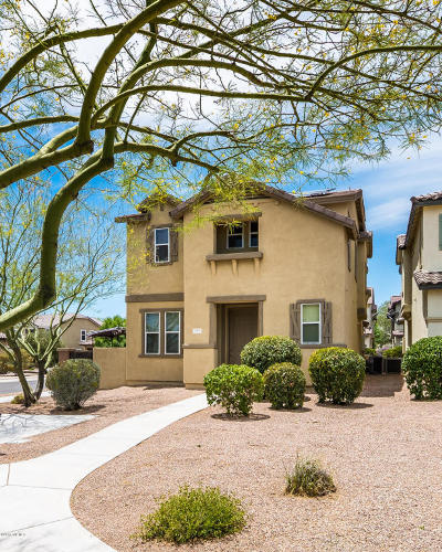 Sahuarita Single Family Home Active Contingent: 558 W Paseo Celestial