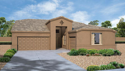Tucson Single Family Home For Sale: 13215 W Tiger Aloe Place