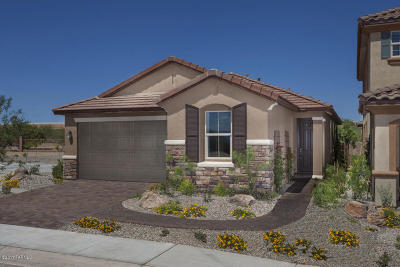 Single Family Home For Sale: 13858 S Camino Acelga