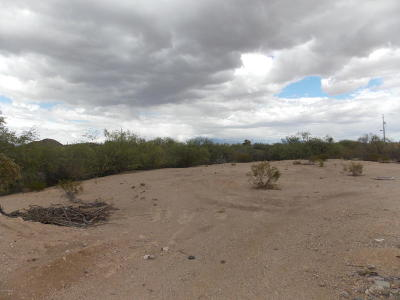 Residential Lots & Land For Sale: S Moonstar Trail