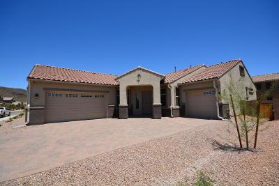 Marana Single Family Home For Sale: 8709 W Hanbury Road