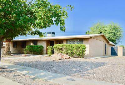 Tucson Single Family Home For Sale: 6422 S Cactus Wren Place