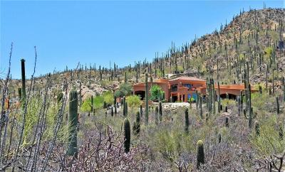 Tucson Single Family Home For Sale: 260 N Resort Hills Place