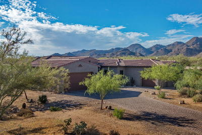 Marana Single Family Home For Sale: 12795 N Distant Wash Drive
