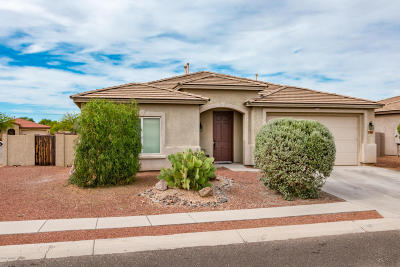 Tucson Single Family Home For Sale: 3661 E Canter Road