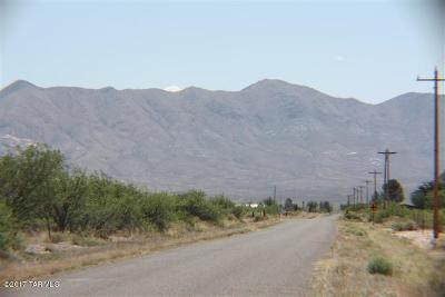 Elfrida Residential Lots & Land For Sale: 4-5 N Mormon Road