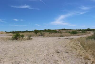 Benson Residential Lots & Land For Sale: 22700 E I-10