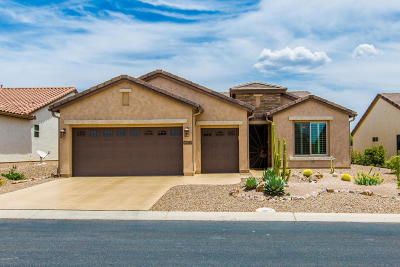 Oracle Single Family Home For Sale: 32393 S Desert Pupfish Drive